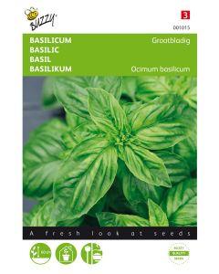Grootbladige basilicum