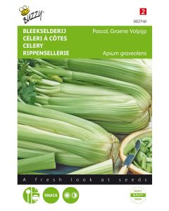 Bleekselderij Pascal, Groene Volpijp