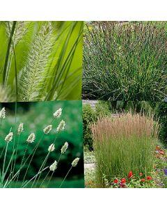 Voordeel grassen pakket